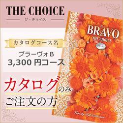 ザ・チョイス ブラ―ヴォB(3300円コース)カタログのみ【合わせて30部以上ご購入の方専用】