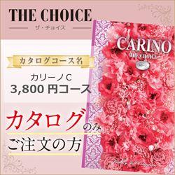 ザ・チョイス カリーノC(3800円コース)カタログのみ【合わせて30部未満ご購入の方専用】