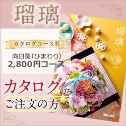 瑠璃 向日葵(ひまわり)(2800円コース)カタログのみ【合わせて30部以上ご購入の方専用】