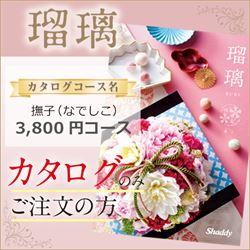 瑠璃 撫子「(なでしこ)(3800円コース)カタログのみ【合わせて30部以上ご購入の方専用】