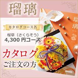 瑠璃 桜草(さくらそう)(4300円コース)カタログのみ【合わせて30部以上ご購入の方専用】