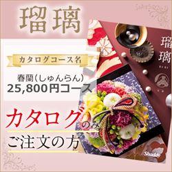 瑠璃 春蘭(しゅんらん)(25800円コース)カタログのみ【合わせて30部以上ご購入の方専用】